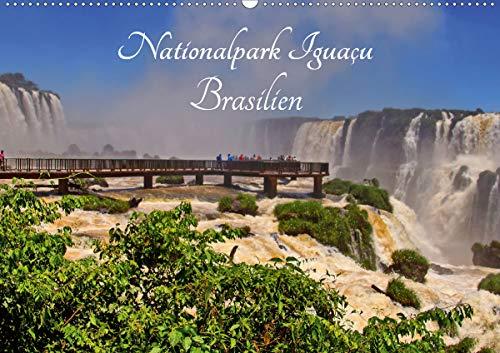 Nationalpark Iguaçu Brasilien (Wandkalender 2021 DIN A2 quer)