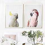 Geiqianjiumai Cacatúa Rosa pájaro Arte Lienzo Pared Animal Loro fotografía Lienzo Arte y póster Dormitorio decoración del hogar Pintura sin Marco 30x40 cm