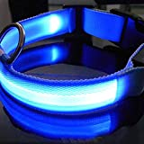 Hemore - Collar LED para perro con luz LED, seguridad para la noche, con hebilla ajustable, color azul, parpadeante