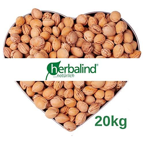 VORRATSPACK 20 kg lose Kirschkerne in Premium-Qualität - Herbalind lose Kirschkerne zur Kissenfüllung für Wärmekissen - schonend gereinigt ohne Chemie