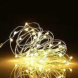Guirnalda Luces 10M LED, LED Luces De Hadas, Luces Navidad De Cálida Amarilla Y Guirnaldas Luces Exterior para Decoración Habitación, Árbol, Jardín, Bodas, Fiesta, Interior, DIY