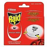 Raid (Paral) Ameisen Köder-Dose für den Innen- und Außenbereich, 1er Pack (1 x 43g )