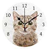 AHOMY Wall Clock Silent Non Ticking Funny Surprised Cat 10 Inch Quality Quartz Battery Operated Round Easy to Read Clock