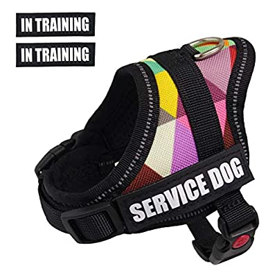 Dihapet Dog Harness, Service Dog Vest, No Pull No Choke Dog Vest for Training Walking Jogging