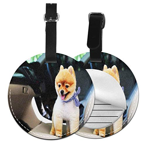 Luggage Tags Short Dog Suitcase Luggage Tags Business Card Holder Travel Id Bag Tag