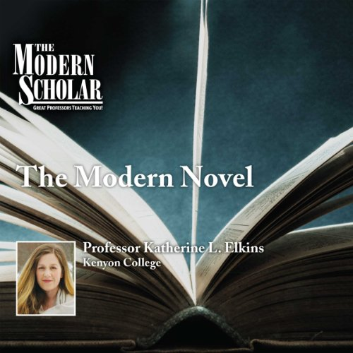 Couverture de The Modern Scholar: The Modern Novel