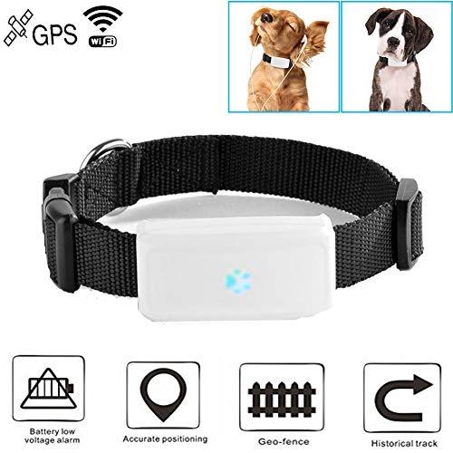 Hangang Rastreador GPS Collar GPS Perros para Perro, Gato o Cualquier Mascota, Resistente al Agua IP66, Batería por hasta 7 Días, Rastreo en Tiempo Real TK911