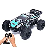 Rabing RC Car 1/24 Scale 15km/h Radio Controlled Electric Vehicle 2WD Off-Road for Kids