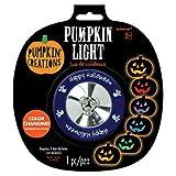 Color Changing Pumpkin Light