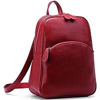 Heshe Vintage Womens Casual Daypack Backapck