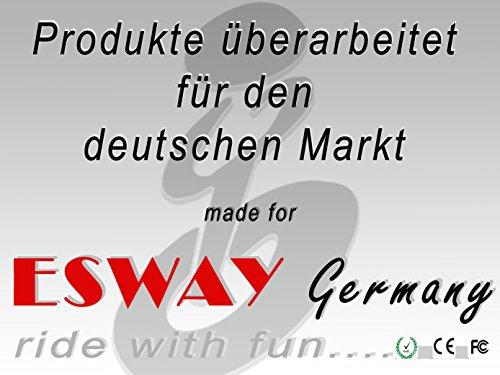 Segway Esway Germany X2 F1 Bild 2*