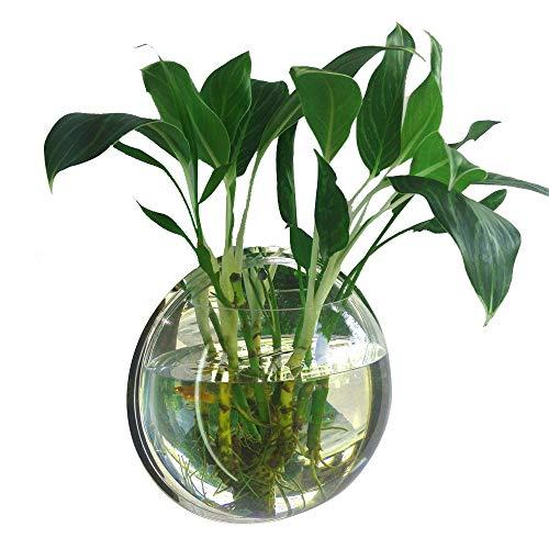 Wandbehang Aquarium, plantenbakken voor wandmontage wand plantenpot hangend acryl wandaquarium, voor aquaria, decoratie voor thuis, transparant 230mm diameter & type 1 transparant