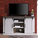RICHSEAT Modern Farmhouse Wood TV Stand for TVs up to 60 Inch, Home Living Room Storage Table TV Stands Cabinet Doors and Shelves Entertainment Center, Stone Grey