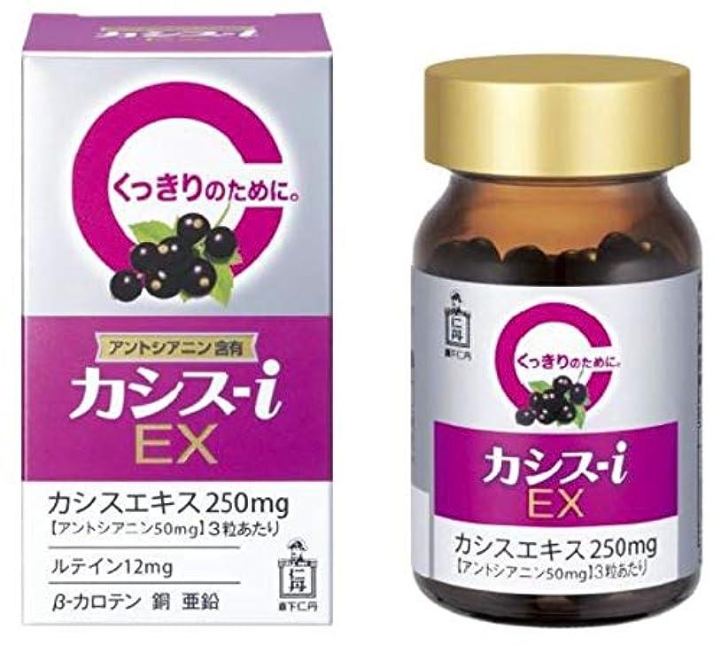 肥料未使用空森下仁丹 カシス-i EX 60粒×2個セット