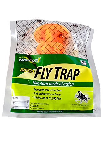 STERLING INTERNATIONAL INC Rescue FTD Disposable NonToxic Fly Trap 12 Traps
