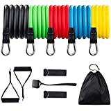 Resistance Bands Set , 11Pcs Exercise Bands with Handles Attached, Door Anchor, Waterproof Carry Bag, Legs Ankle Straps for Women&Men Working out, Resistance Training, Physical Therapy, Yoga, Pilates
