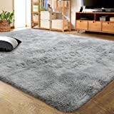 LOCHAS Luxury Velvet Shag Area Rug Modern Indoor Fluffy Rugs, Extra Comfy and Soft Carpet, Abstract Accent Rugs for Bedroom Living Room Dorm Home Girls Kids, 4x6 Feet Light Gray