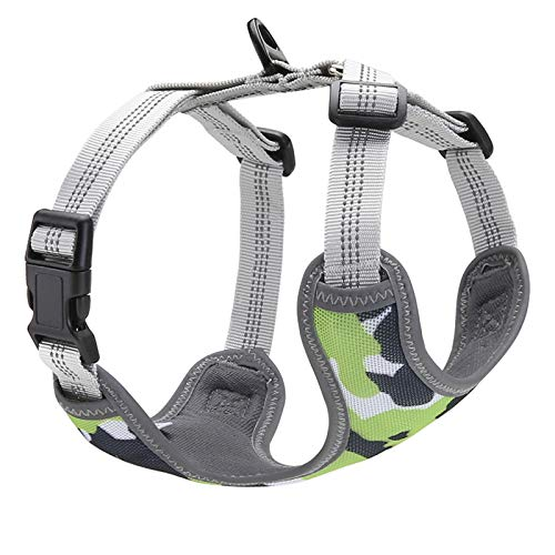 QaBaLee 2pcs Small Dog Harness and Cat Harness, No Pull Dog Harness Anti-Escape Soft Adjustable Vest-Style Safety Belt, Easy Walk The Cute Pet Harness, pet Harness Suitable for Small Dogs and Cat-M