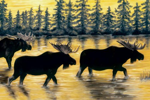 Tree-Free Greetings Noteables Notecards In Reusable Embossed Tin, 12 Card Assortment, Recycled, 4 x 6 Inches, Northwoods Moose, Multi Color (76007) Photo #4