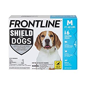 FRONTLINE Shield for Dogs Flea & Tick Treatment, 21-40 lbs, 6ct
