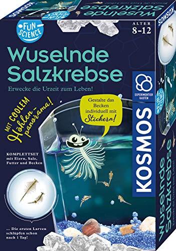 KOSMOS 654160 - Wuselnde Salzkrebse - Experimentierset für Kinder