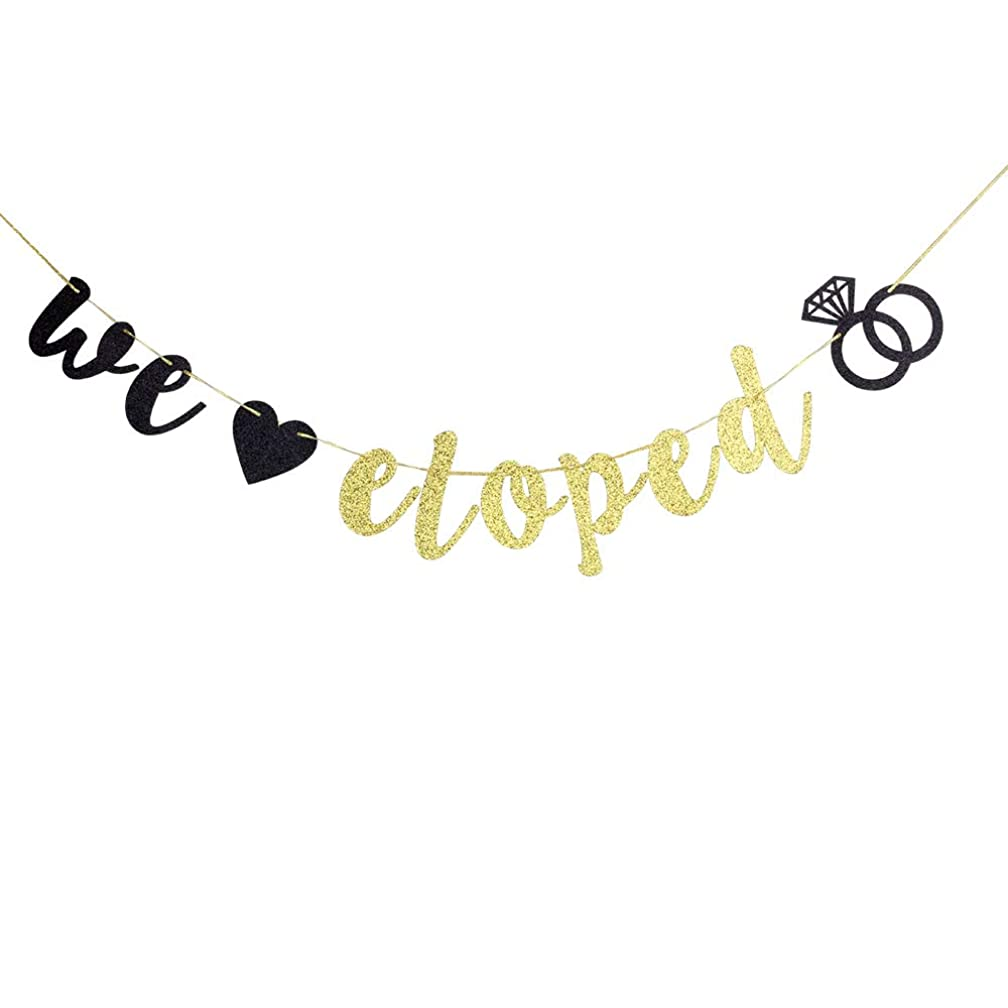 We Eloped Banner - Glitter Engaged,Bridal Shower Bunting for Wedding Decorations, Wedding Announcement Photo Props Signs
