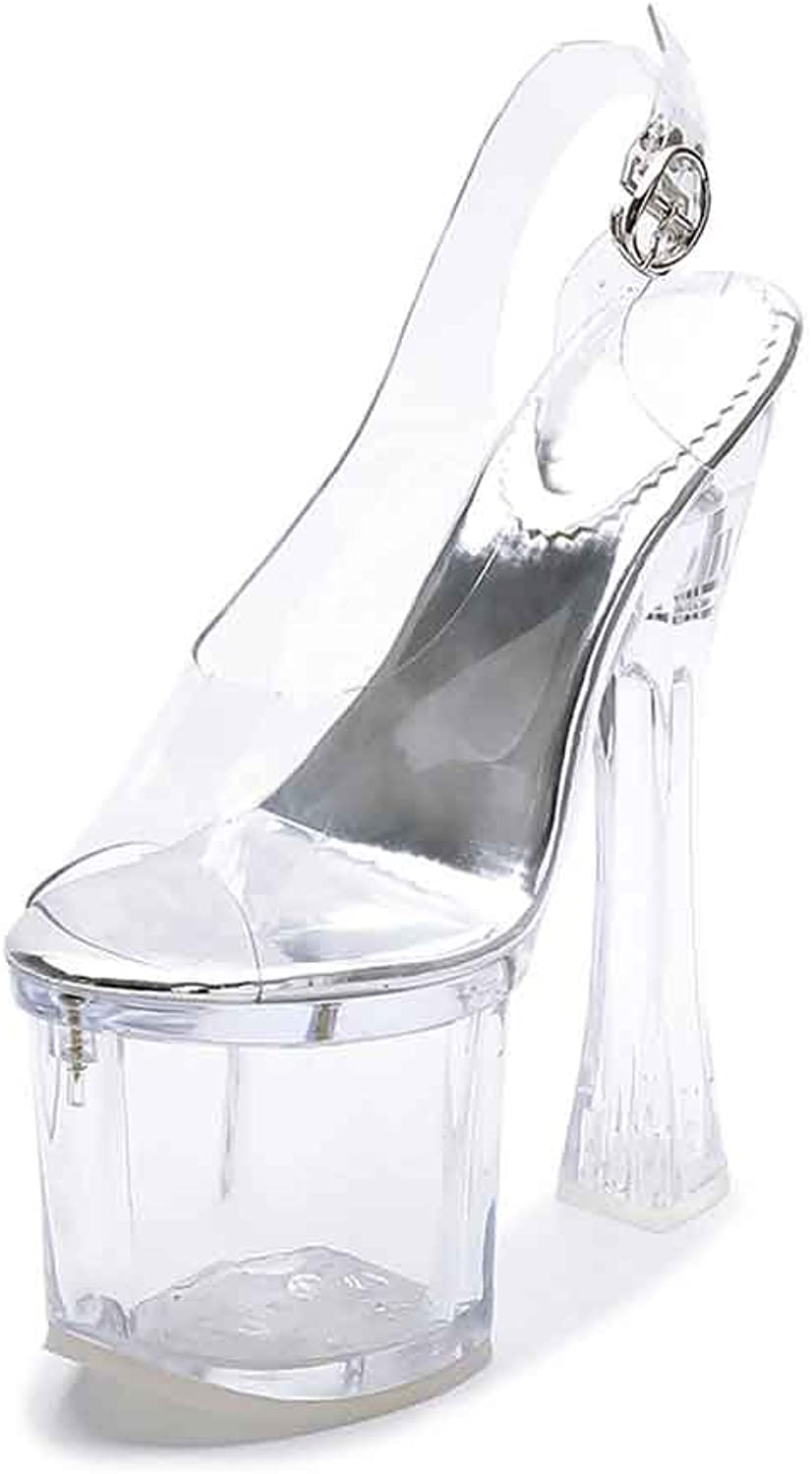 LIURUIJIA Women's 18Cm Transparent Sexy Crystal High Heel Sandals LX-1SB-1