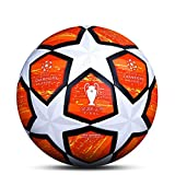 LDLXDR Ballons Match Football- Ballon d'entraînement Toutes Les Tailles 5 4 Match Officiel Adultes Junior Enfants Football Futsal,NO-9,5