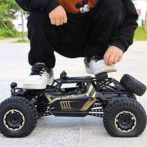 ZCYXQR 2.4Ghz Camiones Todoterreno RC Coche de Control Remoto de Alta Velocidad Radio 4WD Coches eléctricos de Escalada Buggy Hobby Juguete Pascua (Regalo de cumpleaños Festivo)
