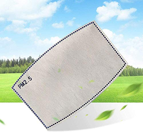 Mejor 10pcs PM2.5 Activated Carbon Filters Insert 5 Layer Anti Haze Filter Cloth for Men Women, Anti Pollution for Adults Outdoor Activities crítica 2020