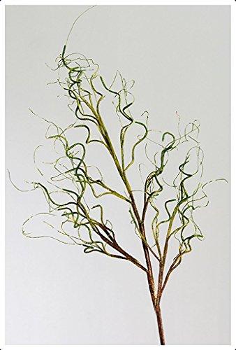 Casablanca Foam Flower Curl grün/braunL.110cm