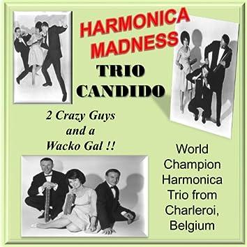 Harmonica Madness