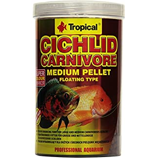 Tropical Cichlid Carnivore Medium Pellet
