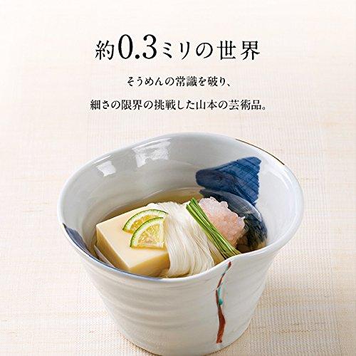 三輪山本家庭用超極細手延べそうめん白髪90g(45g×2箱入り)