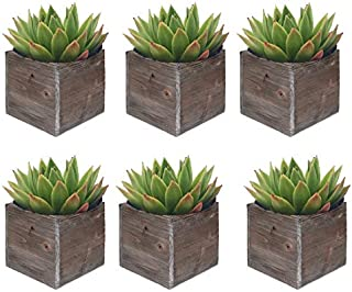CYS EXCEL Rustic Cube Planter Box, Wood Planter, Decorative Craft Box, Succulent and Floral Arrangements, Wood Box with Removable Liner H:4