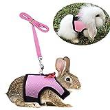 Ensemble de promenade réglable pour petit animal avec gilet harnais élégant, doux et perméable à l'air et laisse