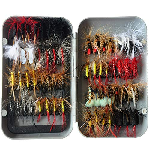 MSLONG Fly Fishing Flies Kit Fly Assortment Trout Bass Salmon Fishing Lures with Fly Box, Dry Wet Flies, Nymphs, Streamers, Popper 64Pcs
