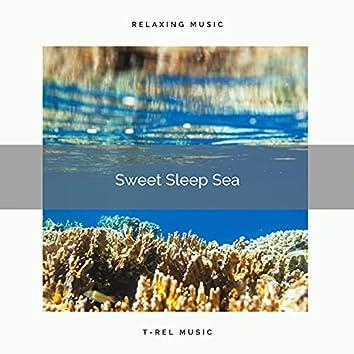 ! ! ! ! ! ! ! ! ! ! Sweet Sleep Sea