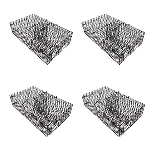 Rugged Ranch RATTR Ratinator Live Rat Chipmunk Squirrel Mouse Rodent Small Animal Metal Wire 2 Door Trap Pest Control Cage, Black (4 Pack)