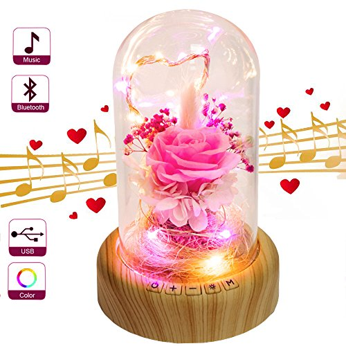 SWEETIME Pink Rose Night Light Real Preserved Rose in Glass Dome, Preserved Rose Flower Lamp with...