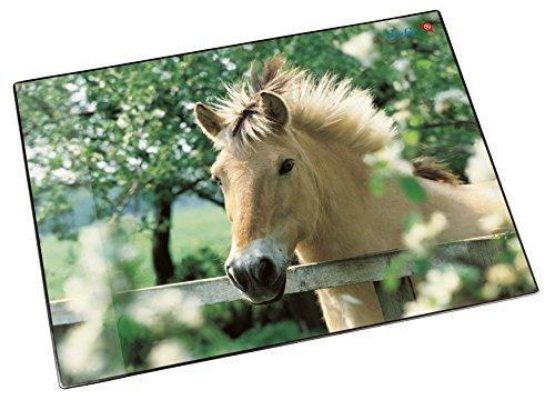 Läufer 46640 Schreibtischunterlage Pferd am Weidezaun, 53x40 cm, rutschfeste Schreibunterlage für Kinder, verschiedene Motive, mit transparenter Seitentasche