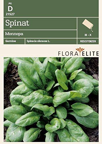 Flora Elite 21527 Spinat Monnopa (Spinatsamen)