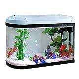 DUTUI Mini-Aquarium Mit Kugelkopf, Desktop-Aquarium Für Kleine Haushalte, Wasserfreies Wohnzimmer,...