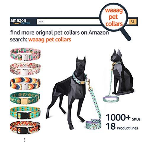 Cat Harness Large Dog Collar Cat Collar Dog Harness Dog Collar Dog Leash Medium Dog Collar Cat Leash waaag Pet Supplies, Pet Collar, S Tropical Forest Small Dog Collar