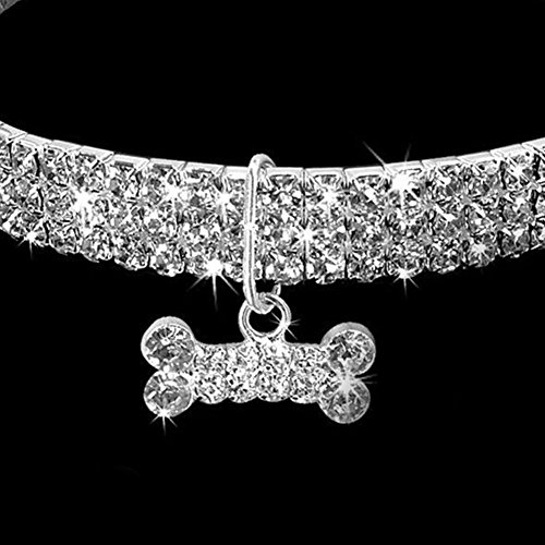 GEZICHTA Collar para Perro con Diamantes de Imitación de la Marca Gzichta, Collar para Mascotas Pequeñas o Medianas con Colgante en Forma de Hueso