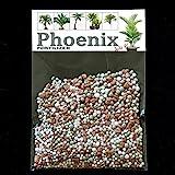 Fertilizante Phoenix NPK - Phoenix roebelenii – palmera dwarf data, palmera dada pigmea, palma dada miniatura, palma robellini - suficiente para 20 litros