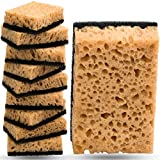 Kitchen Sponge in Vacuum Set Multi-Use [10 Pack] Non-Scratch Dish Sponge for Your Nonstick Cookware,...