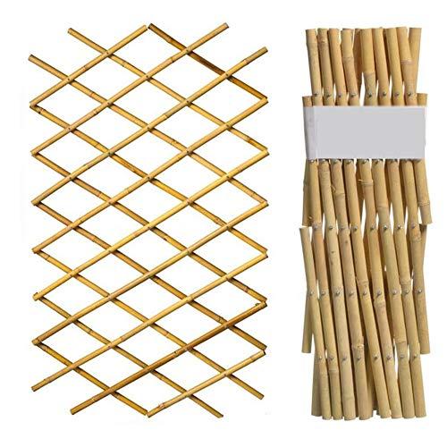 YOGANHJAT Celosia Madera Extensible bambú Resistente para Plantas De pie Valla jardín Planta Apoyo...