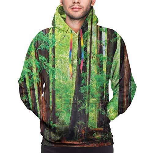 AIQIIA Men's Hoodies 3D Print Pullover Sweatershirt,Redwood Trees Northwest Rain Forest Tropic Scenic Wild Nature Lush Branch,L