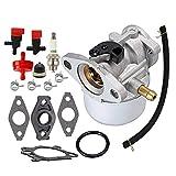 ARJ 799868 Carburetor for Briggs Stratton 498254 497347 497314 498170 497586 Small Engine Carb with gaskets Spark Plug Fuel Shut Off Valve Kit